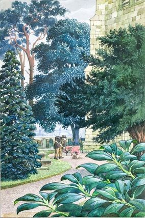 Evergreen trees and bushes. C. C. Tunnicliffe