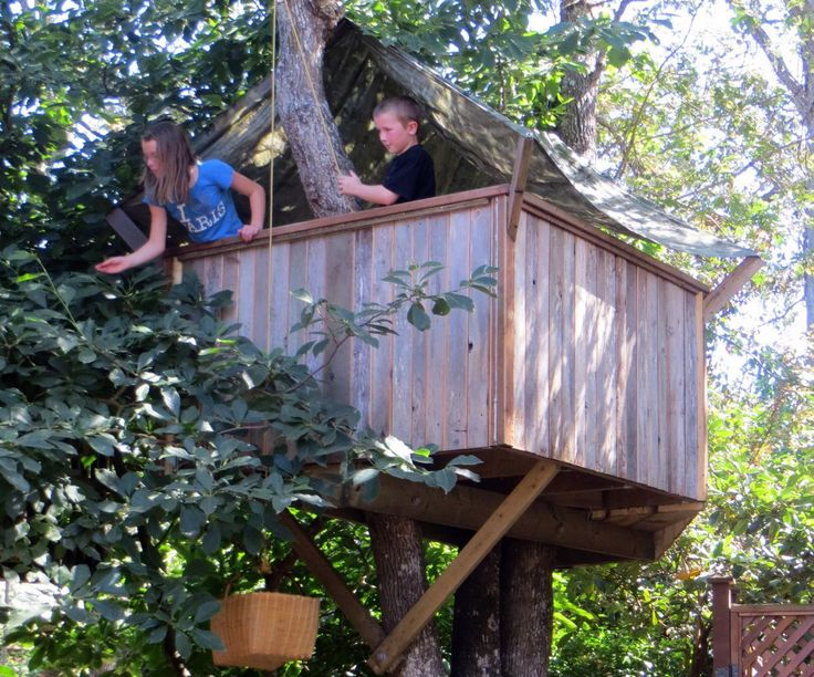 160 best treehouse images on pinterest furniture ideas for How to make a treehouse step by step