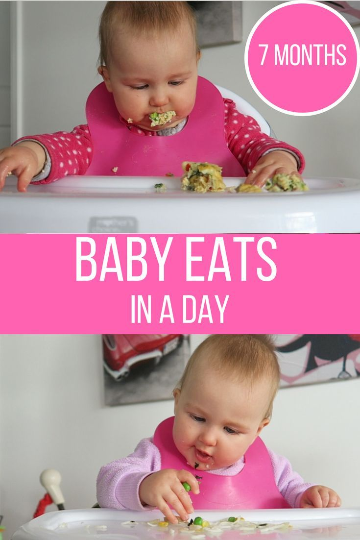 Baby Meal Ideas For 7 Month Old Combination Of Baby Led Weaning