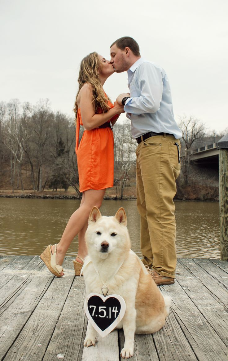 Wedding Save the date picture idea with dog! - Solarczyk Photography (Northern Virginia & DC Area)