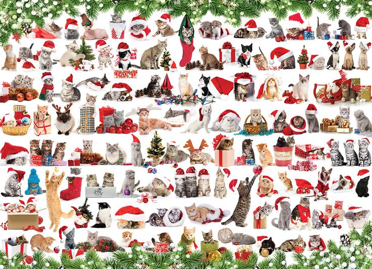 Holiday Cats! 1000 piece puzzle. This cute collage of Christmas kitens is sure to delight cat lovers everywhere.