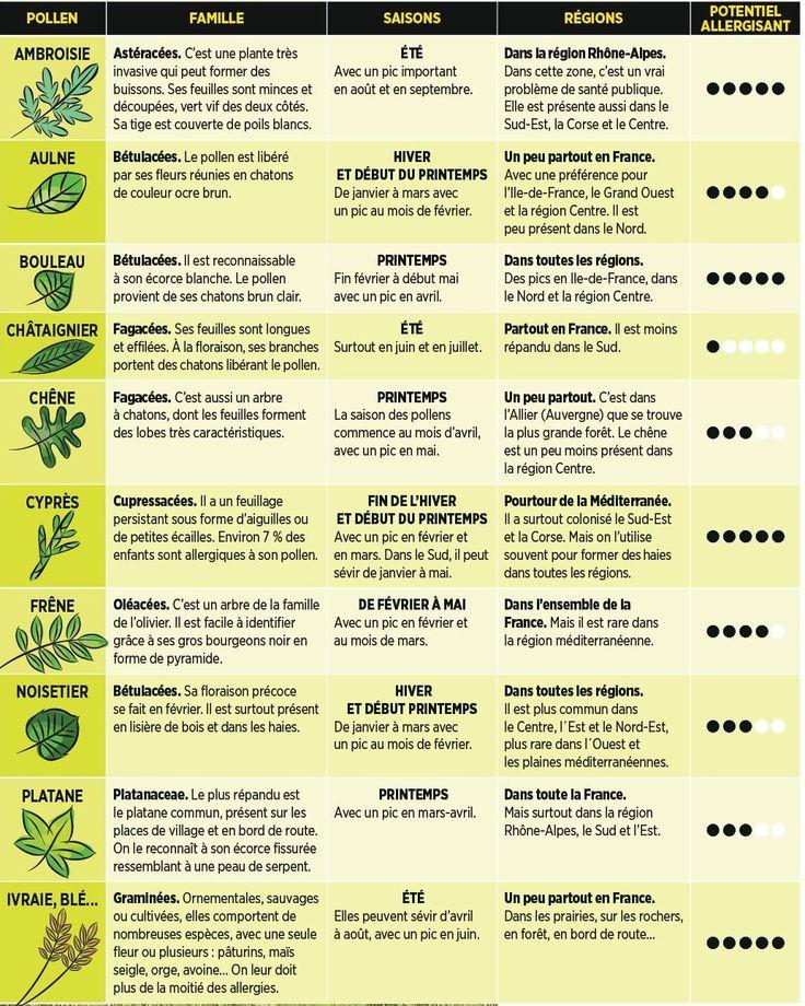 Le calendrier des pollens