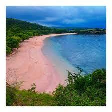 What makes Komodo pink beach so special?