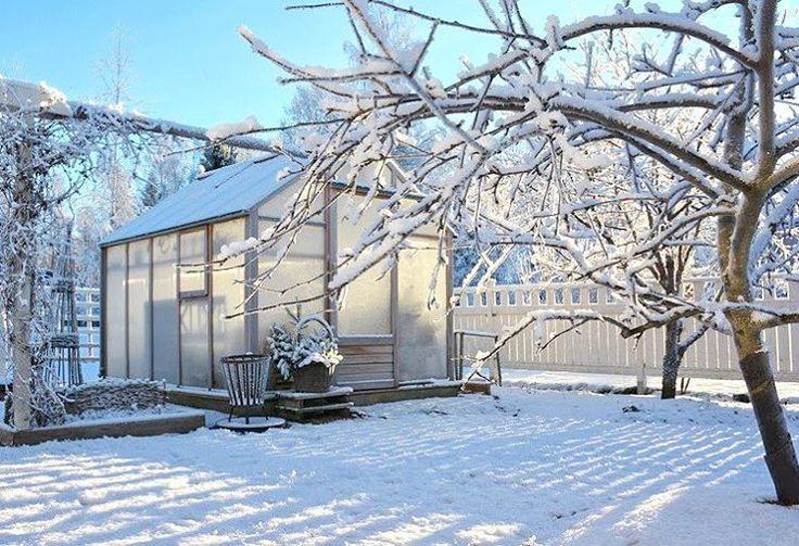 Kaunista on, mutta niin kovin kovin kylmää❄❄️Brrrr, it's beautiful but oh so freezing! #paukkupakkaset #helmikuu #talvi #talvipuutarha #kasvihuone #keittiöpuutarha #talvikasvihuone #wintergarden #kitchengarden #winter #greenhouse #snow #winterwonderland #toocold #vinterträdgård #växthus #köksträdgård #nordicgardenbloggers @nordicgardenbloggers