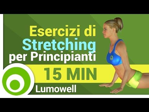 Esercizi di Stretching per Principianti - YouTube