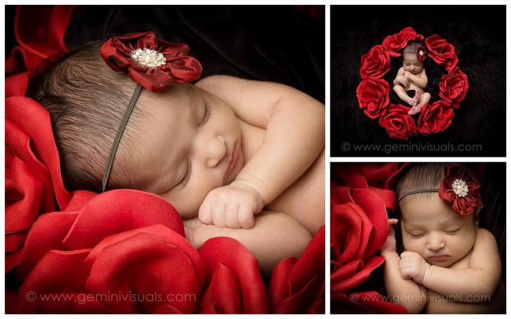 Newborn baby photography baby with gorgeous red roses gemini visuals creative photography white rock