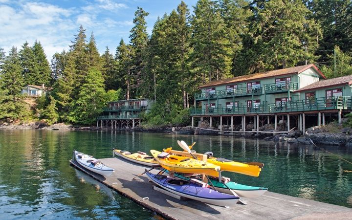 A Canadian road trip on Vancouver Island – from the tip of the island to the top, with wineries, waterfalls and whales along the way.
