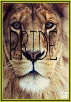 Прайд — Pride (2014) http://zserials.cc/dokumentalnye/pride.php  Год выпуска: 2014 Страна: США Жанр: документальный Продолжительность:2+ выпусковОписание Сериала:  Львы — символ отваги и силы — изучались людьми на протяжении многих десятилетий. Благодаря камерам тепловидения этот фильм раскроет последние тайны крупнейших кошек Африки. Мы проследим за двумя прайдами, обитающими в Южной Кении, днём и ночью, открывая ошеломительные детали поведения этих роскошных хищников. Трудные времена для…