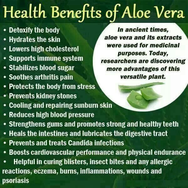 17 best images about aloe vera tips on pinterest medicinal plants health and chapped lips. Black Bedroom Furniture Sets. Home Design Ideas