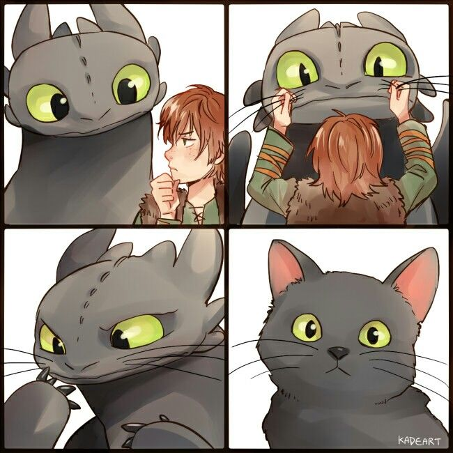 Cat? ... How to train your dragon, toothless, hiccup, night fury, dragon, viking, cat