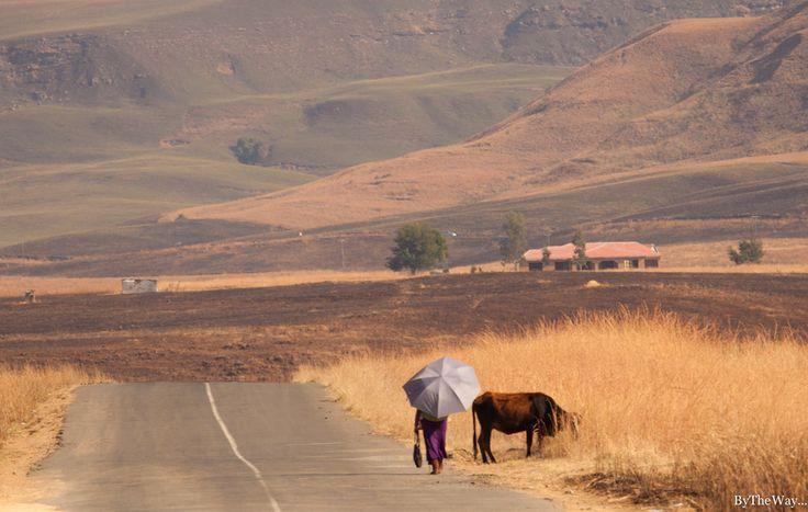 Drakensberg road, South Africa