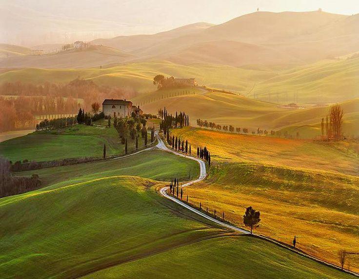 Αποτέλεσμα εικόνας για Traveling Tuscany and experiencing all about olives with Luxo Italia
