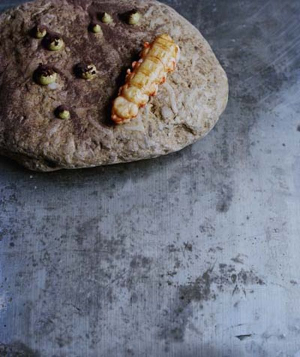 The Dishes of Noma by Rene Redzepi