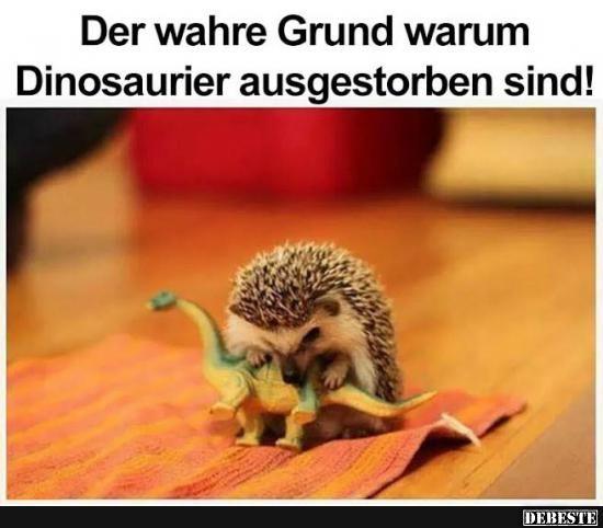 Der Wahre Grund warum Dinosaurier asugestorben sind!