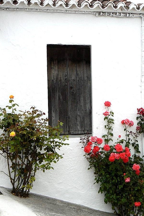 Pueblo Blanco - Serrania de Ronda: Ventana