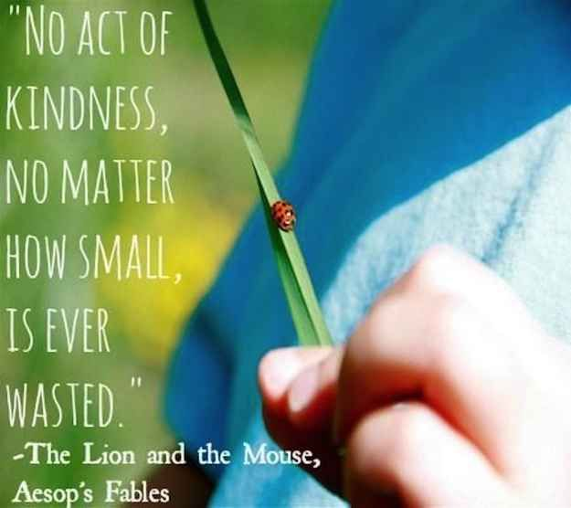 Kindness goes a long way, you can really change someone's day by being nice to them. ~~ Aesop, The Lion and the Mouse | 15 Wonderful Quotes About Life From Children's Books