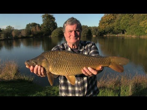 (1794) Fishing the Creuse near Fresselines, final autumn selection 2017. - YouTube