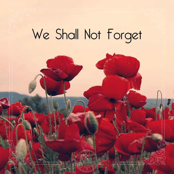 Remembering those who gave their lives for us. #neverforget #remembranceday
