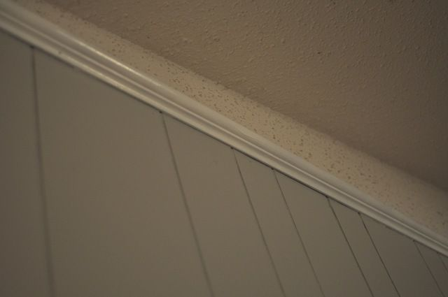 How to Paint Wood Paneling (DIY Instructions)