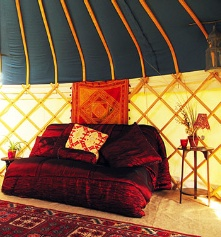 Yurt heaven,  In Devon,  at Haven Meadows Yurt Camp (I know, that last part doesn't rhyme)