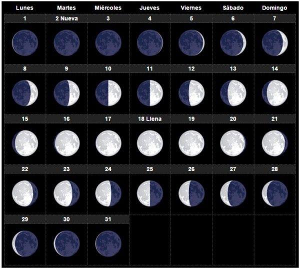¿Estás embarazada y vas a dar a luz en 2016? A continuación te explicamos cuál es el calendario lunar para el próximo año de modo que puedas comenzar a pensar en tu fecha de parto. Veámos de qué manera la luna puede llegar a influir en la fecha de nacimiento de tu bebé, o cómo podemos utilizar las fases lunares para saber cuando podría nacer nuestro futuro bebé.