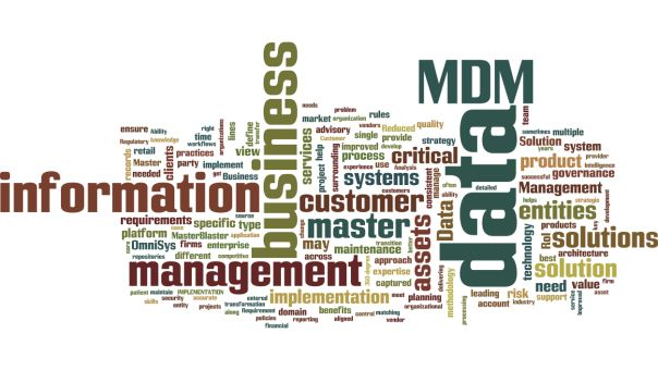Master Data Management Success Stories