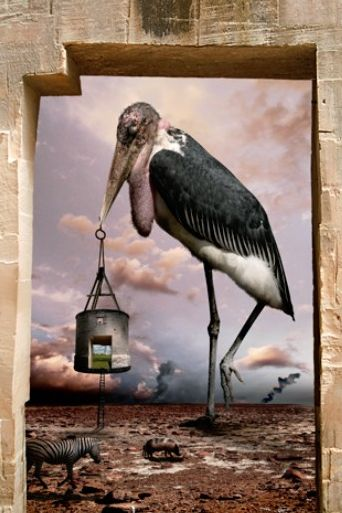 Love the juxtaposition of images here, and the way in which their combination create meaning and narrative (artist: Chris Bennett)
