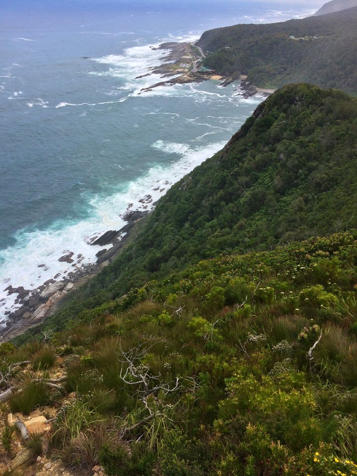 Tsitsikamma National Park (Garden Route), South Africa.