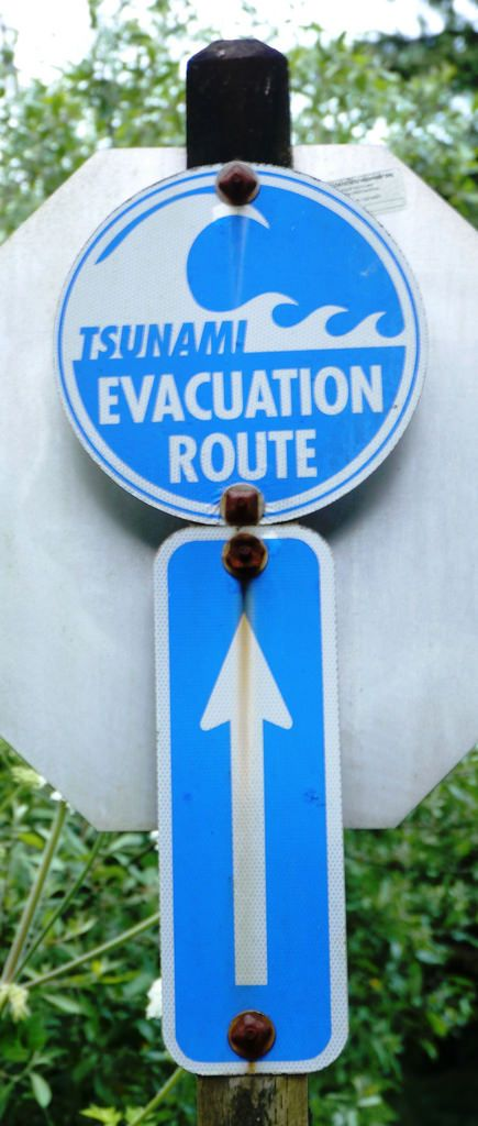 Do you live near a tsunami zone? More importantly, do you know which way to evacuate if one is coming? #tsunami #prepper #bugoutbag #bobchecklist | The Prepared