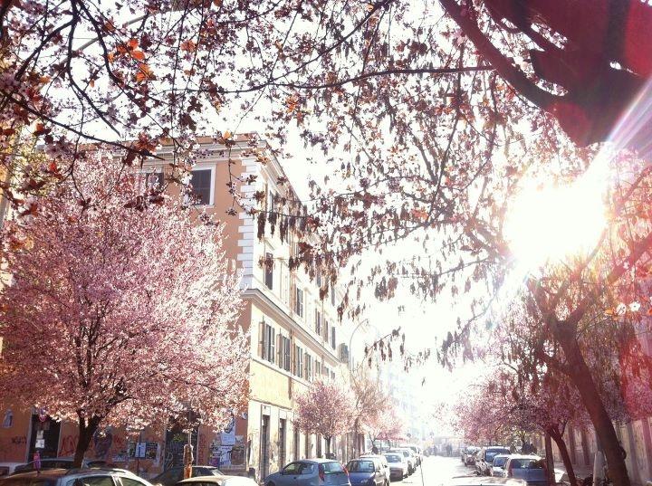 primavera al pigneto...