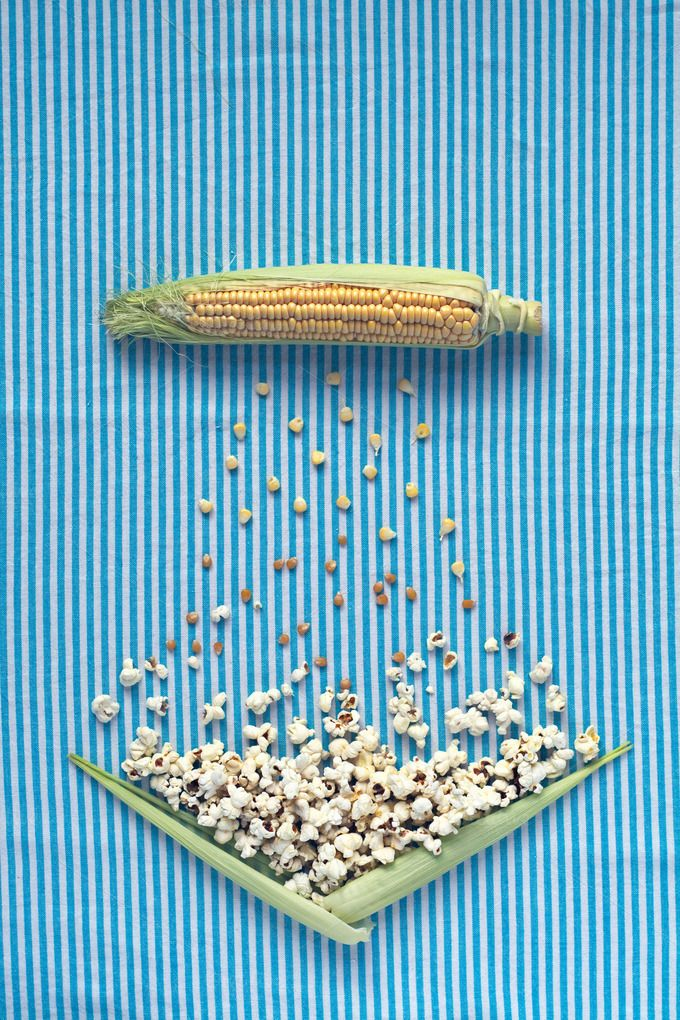 Table top: corn cob to popcorn. by kawizen  on @creativemarket#corncob #corn #sweetcorn #popcorn #pop #heat #process #processing #yellow #blue #field #symbol #symbolic #healthy #salt #crop #agriculture #farm #vegetarian #grain #vegetable #harvest #snack #cultivation #grown #veggie #healthyfood #poppingcorn #corngrain #tabletop #tabletopview #topview