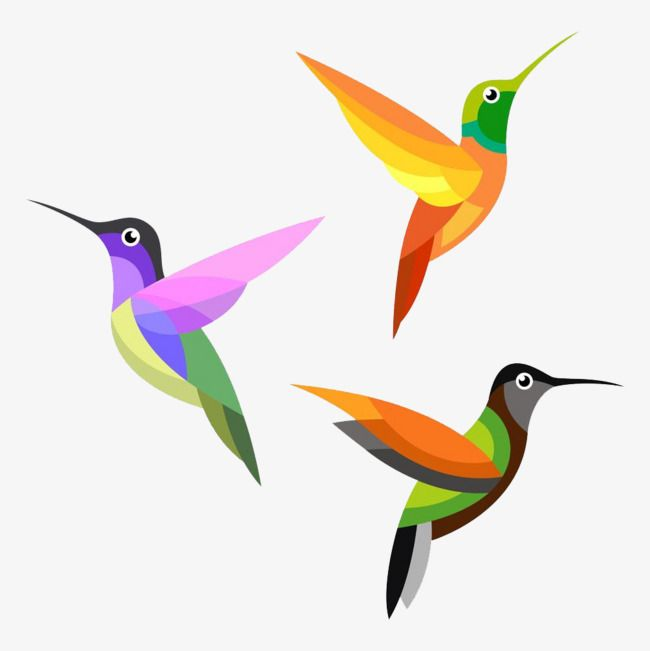 Bird Logo Vector Design Free Logo Design Template Logo Icons Bird Icons Template Icons Png Transparent Clipart Image And Psd File For Free Download Bird Logo Design Logo Design Free Logo