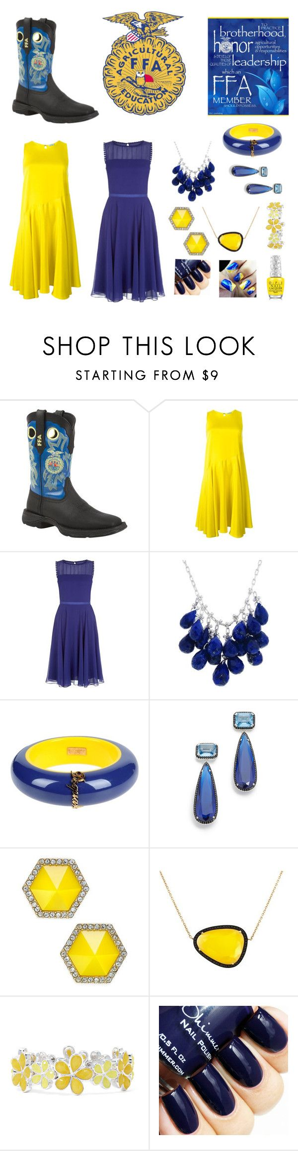 """This is National FFA week"" by maythehorsebewithyou ❤ liked on Polyvore featuring Durango, P.A.R.O.S.H., Dsquared2, Jarin K, ABS by Allen Schwartz, Christina Debs, Liz Claiborne, Hello Kitty, women's clothing and women"
