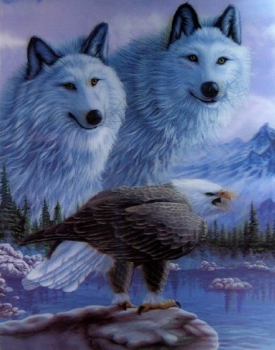 Wolves and Eagle 3D Picture