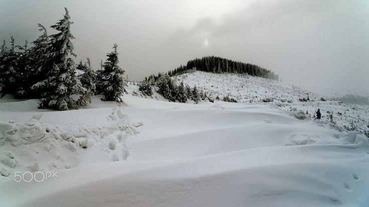 ***** - Apuseni mountains