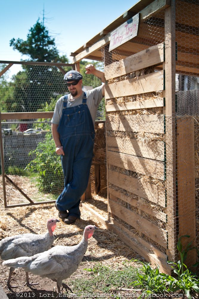 Tom Ferguson S Turkey Coop Made From Pallets Think I Will