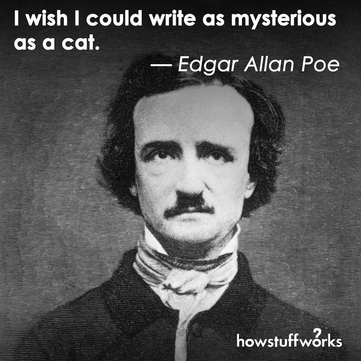 the life and writing works of edgar allan poe The website for people interested in serious scholarship and study about edgar allan poe: biographies, chronologies, and a comprehensive collection of the works of edgar allan poe, including poems, short stories, pym, letters, criticism and miscellaneous writings, with variants and bibliographies, as well as articles and.