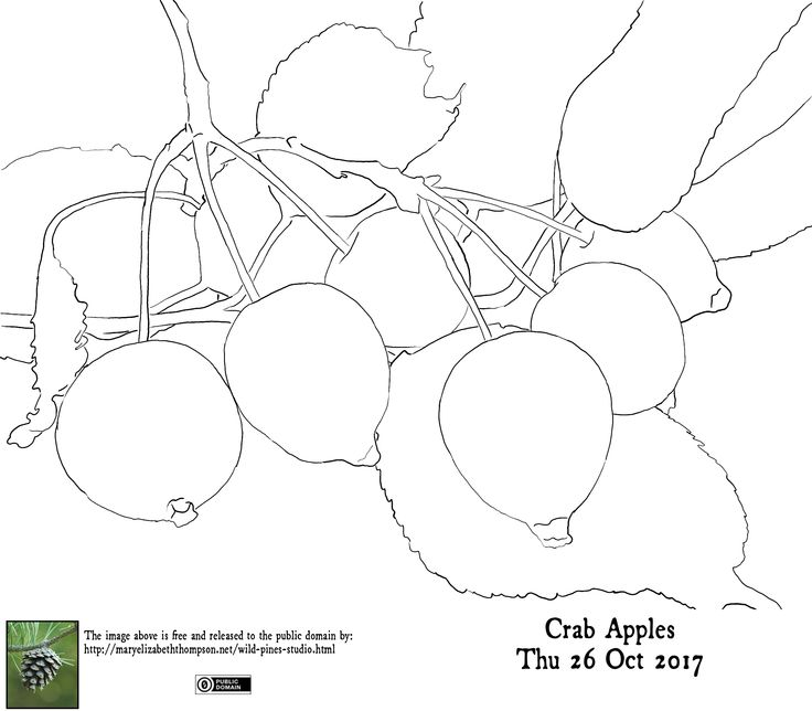 Traceable for Crab Apples