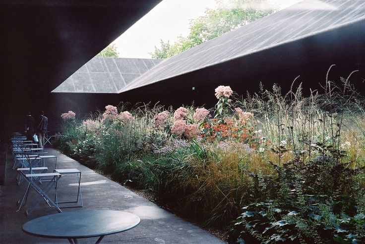 Serpentine Gallery Pavilion, 2011, by Peter Zumthor; garden design by Piet Oudolf