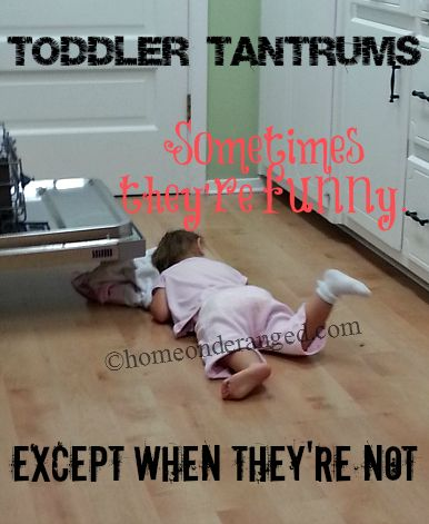 Home on Deranged - Sometimes tantrums are funny. Except when they're not. with @Matt Valk Chuah noise of boys #toddlers #tantrums #motherhood #humor #familylifestyle