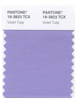 Violet Tulip #Pantone #Spring2014 #VioletTulip