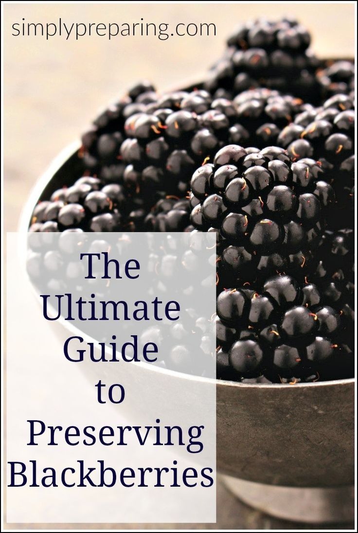 How to preserve blackberries