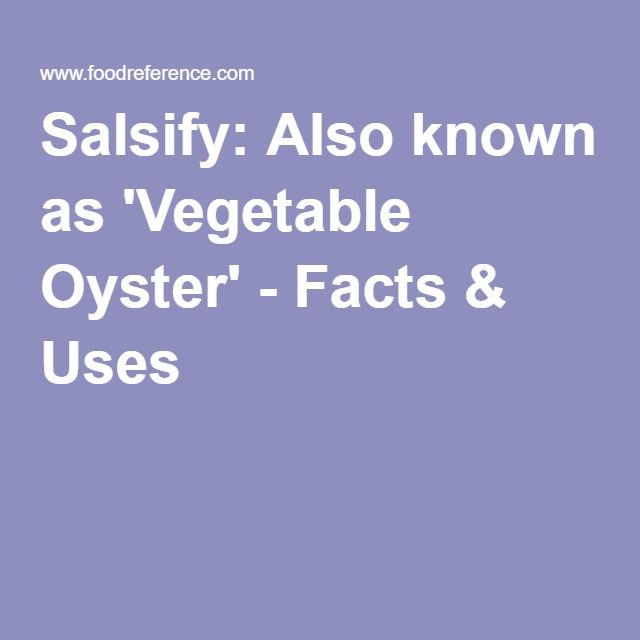 Salsify: Also known as 'Vegetable Oyster' - Facts & Uses