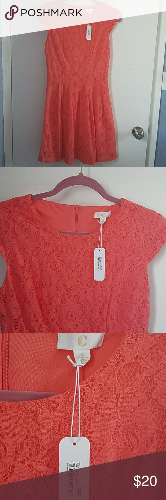 NWT Coral Lace Dress (S) Adorable lace dress in a coral color. Lace is a floral pattern. Has capped sleeves. Charming Charlie Dresses Mini