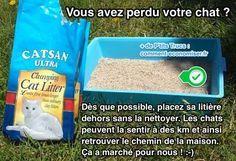 Cette technique a été dévoilée par une personne qui travaille à la SPA avec les chats. L'astuce est de mettre la litière du chat disparu à l'extérieur. En effet, les chats peuvent la sentir à presque 2 km et ainsi retrouver le chemin de la maison.  Découvrez l'astuce ici : http://www.comment-economiser.fr/astuce-incroyable-pour-retrouver-un-chat-perdu-facile.html?utm_content=bufferb5f8b&utm_medium=social&utm_source=pinterest.com&utm_campaign=buffer