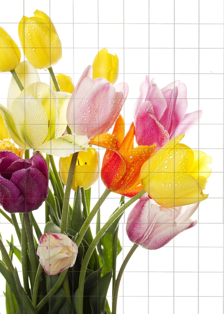 This striking tiled tulip design mural is a stock design available from Tiled Space!