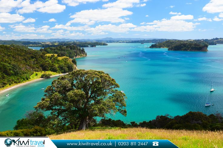 Mahurangi River, New Zealand:  |    The #Mahurangi #River is a tidal estuary in #northern New Zealand that widens into the Mahurangi #Harbour before opening into the outer #Hauraki #Gulf.  |    Source: https://en.wikipedia.org/wiki/Mahurangi_River  |    #mahurangiriver #newzealand #photo #like #destination #beautiful #tourism #travelgram #flights #travel #bestflightoffers #nz #kiwitravel #cheapflights #travelagents #travelagentsinuk  |    New Zealand #travelexperts…