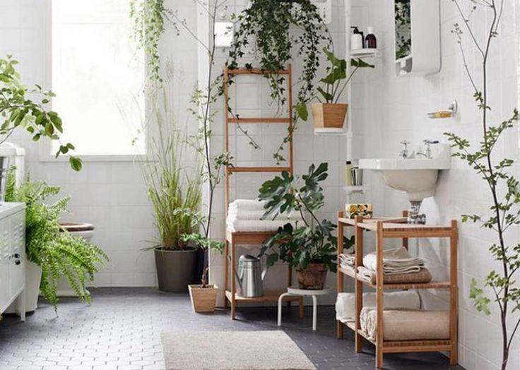 Si toutes les plantes ne conviennent pas à la salle de bains, d'autres au contraire s'y épanouissent parfaitement. Publié le 02/02/2017Certains n'y font que passer à vitesse grand V, d'autres y passeraient volontiers des heures entières pour s'y prélasser et se ressourcer. Véritable lieu apaisa