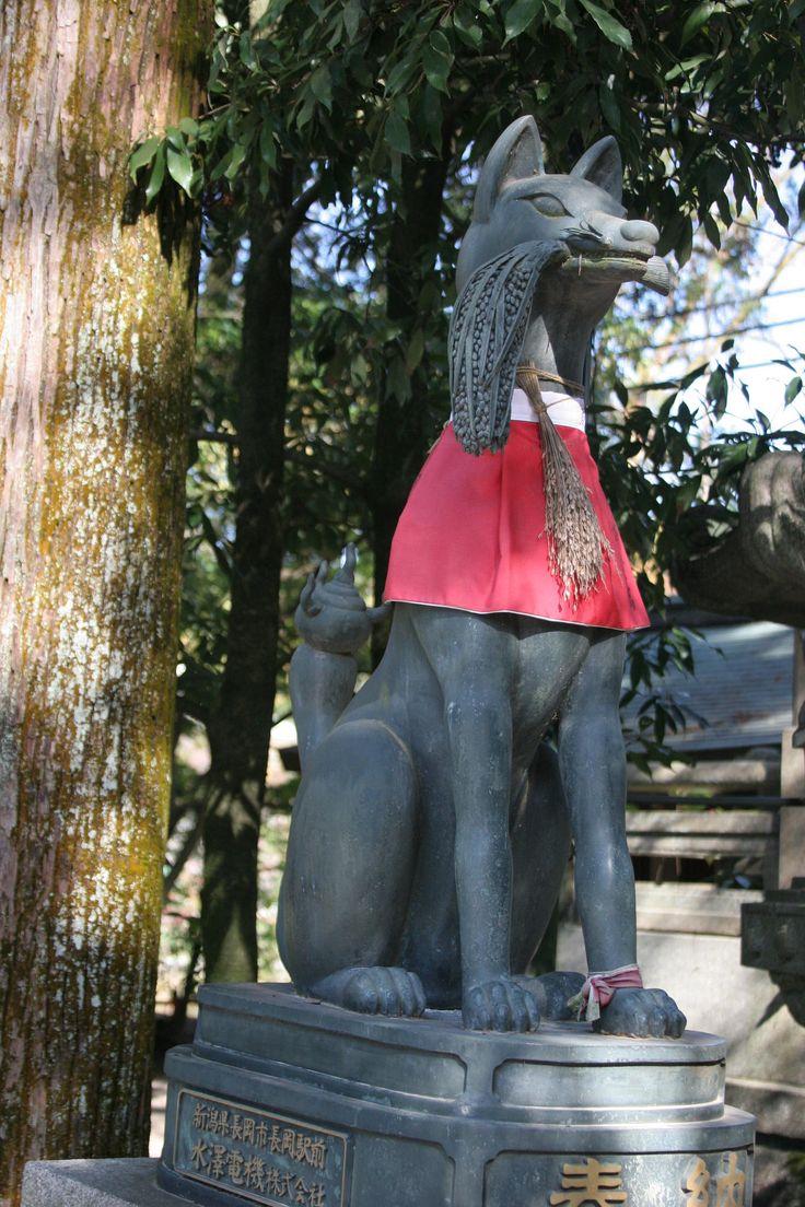 Baby inari fox for sale - Https Flic Kr P Bvrozb 20151120 Japan Fushimi Inari Taishafoxes