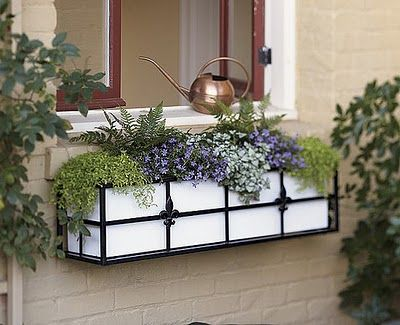 Good tips for planting flowers in a window box